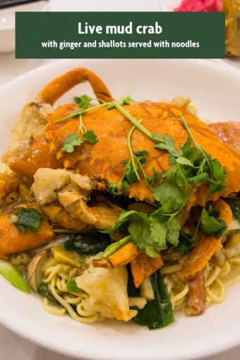 Recommendation Parkland Live mud crab with Ginger and Shallots served with E Fu noodles 340x510 - Parkland